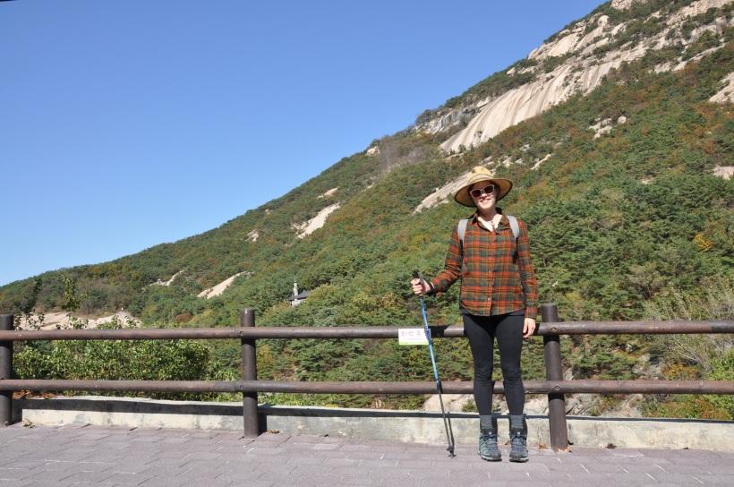 Rental hiking pole