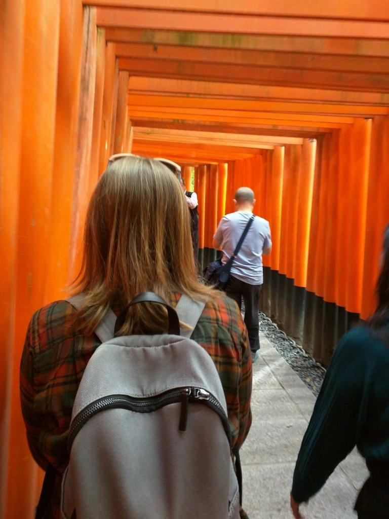 So many torii